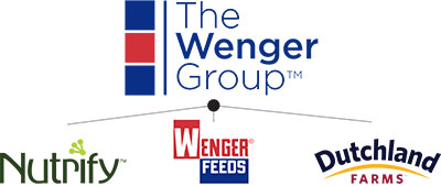 Corporate Structure of The Wenger Group