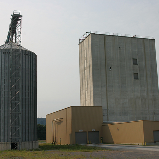 Wenger Feeds, Muncy Mill