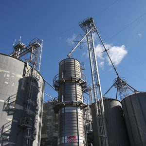 Wenger Feeds' Massey Mill